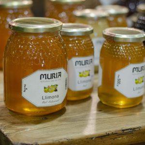 Miel de limón Muria Artdemans Maçanet de la Selva, Girona
